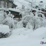 Feb 2010 Snowstorm
